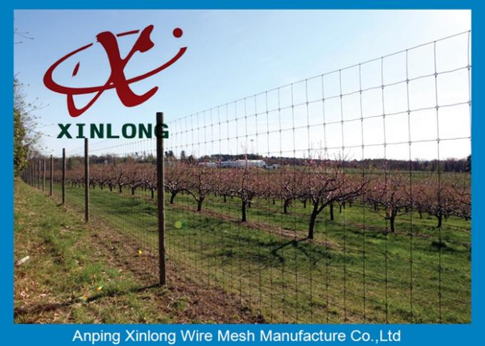 High Securety Galvanized Field Fence For Cattle / Horse / Sheep Good Flexibility