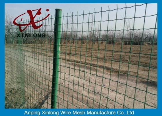 Cina Commercial Horizontal Fence Panels , Holland Wire Mesh PVC Coated pemasok